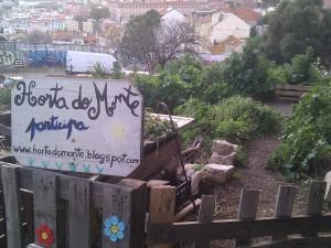 Horta do Monte
